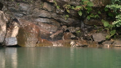 Small waterfall between rocks Stock Footage