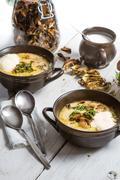 Two plates of wild mushroom soup Stock Photos