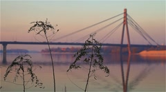 Plant and the bridge Stock Footage