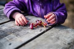 Child eating grapes Stock Photos