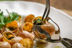 closeup of consume snails fried in garlic sauce - stock photo