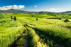 Countryside footpath in tuscany Stock Photos