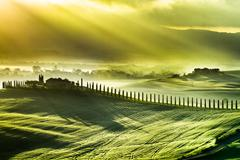 Beautiful spring sunrise over the valley of san quirico d'orcia Stock Photos