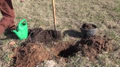 Planting apple tree in spring garden Stock Footage