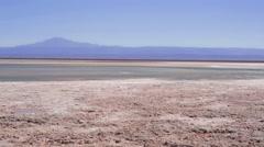 Chaxa Lagoon at the Atacama Desert Stock Footage