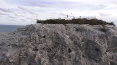 White Rock at the white cliffs of Dover Stock Footage