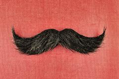 retro styled image of a black curly moustache - stock photo