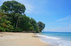 costa rica caribbean beach with lush vegetation - stock photo