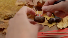 Painting eyes spots on caterpillar figure of chestnuts Stock Footage