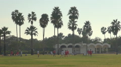 Stock Video Footage of Young boy play soccer green grass meadow Dubai public park day healthy sport