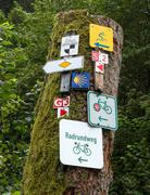 Signs in the forest - stock photo