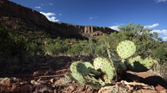 Cactus and flowing clouds, over mountains in the desert. Stock Footage