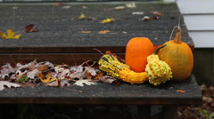 Snow falls on pumpkins sitting on porch Stock Footage