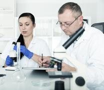 Couple of scientists at work in a laboratory Stock Photos