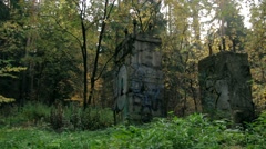 Static surveying the remnants of the building in the autumn forest Stock Footage