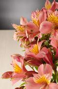 bouquet of a beautiful alstroemeria flowers on wood - stock photo