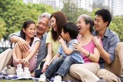Portrait of multi-generation chinese family relaxing in park together Kuvituskuvat