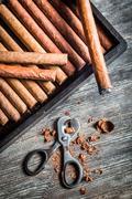 Enjoy of cigar Kuvituskuvat