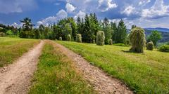 country road between the sheaves of hay - stock photo