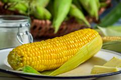 boiled corn served with butter - stock photo