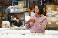 Manager checking goods on production line Stock Photos