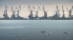 Large industrial cranes on a wharf Stock Footage