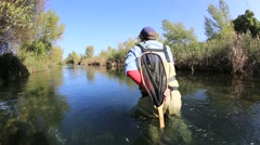 back view of fly fisherman in river - stock footage