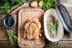 spiced chicken before roasting - stock photo