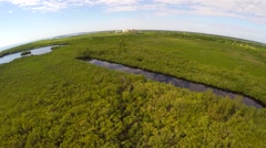 Aerial video Florida nature mangrove preserve Stock Footage