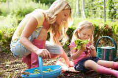 Mother and daughter harvesting radish on allotment Stock Photos