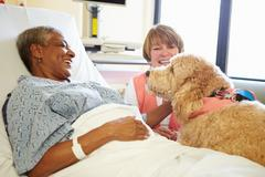 Pet therapy dog visiting senior female patient in hospital Kuvituskuvat