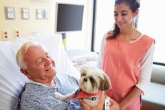 Pet therapy dog visiting senior male patient in hospital Kuvituskuvat