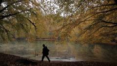 Jungle, Lake, Traveler, Tracking, Human, Rain, Autumn, Forest, Photographer Stock Footage