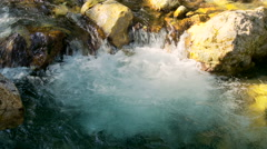 Mountain stream in the with clear water  Stock Footage