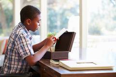 Boy looking at document in keepsake box on desk Stock Photos