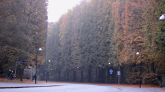 Huge park wood in center malmo sweden Stock Footage