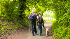 senior couple hiking with dog in nature - stock footage