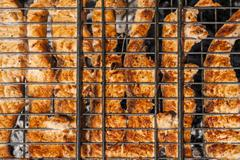 Salmon fillet on the grill with flames in horizontal orientation Stock Photos