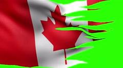 Flag of Canada loop alpha Stock Footage