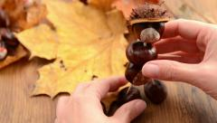 Creating chestnut manniquen Stock Footage