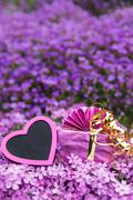 Stock Photo of greeting card pink heart and present atop lilacbush