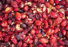 Dry berry rose hips Stock Photos