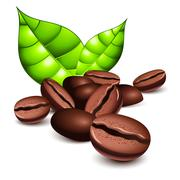 coffee beans and leaves - stock illustration
