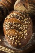Freshly baked whole wheat bread Stock Photos