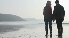 Rear View Of Senior Couple Walking On Beach In Slow Motion Stock Footage