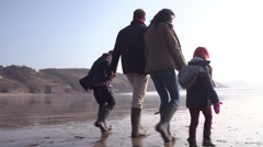 Multi Generation Family Walking On Winter Beach With Dog - stock footage