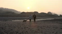 Senior Couple With Dog Walking On Beach In Slow Motion Stock Footage