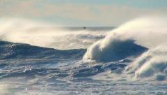Stock Video Footage of Ocean storm big waves sea birds spray with seabirds in sunset sky