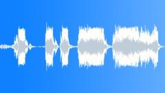 Big Bear Growls - 2 - sound effect