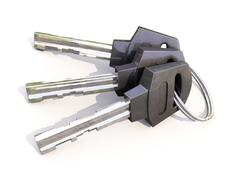 bunch of house keys - stock illustration